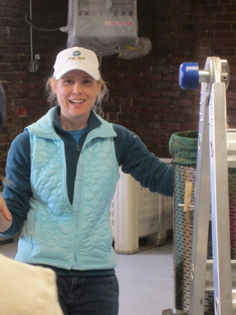 Courtney Mailey of Blue Bee Cider