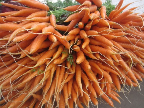 Oregon Carrots